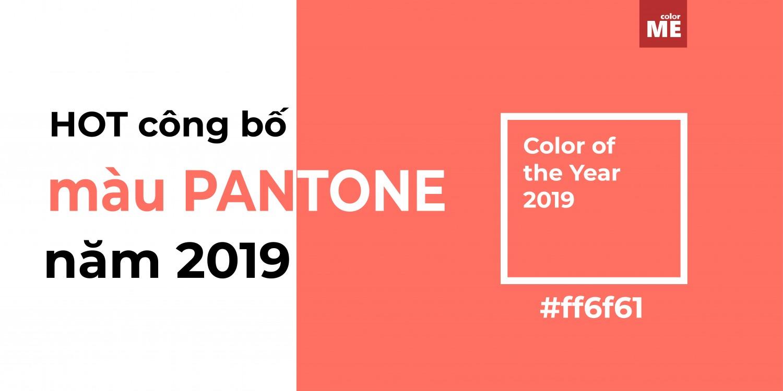 Pantone 16-1546 Living Ccral vừa được công bố là màu Pantone của năm 2019