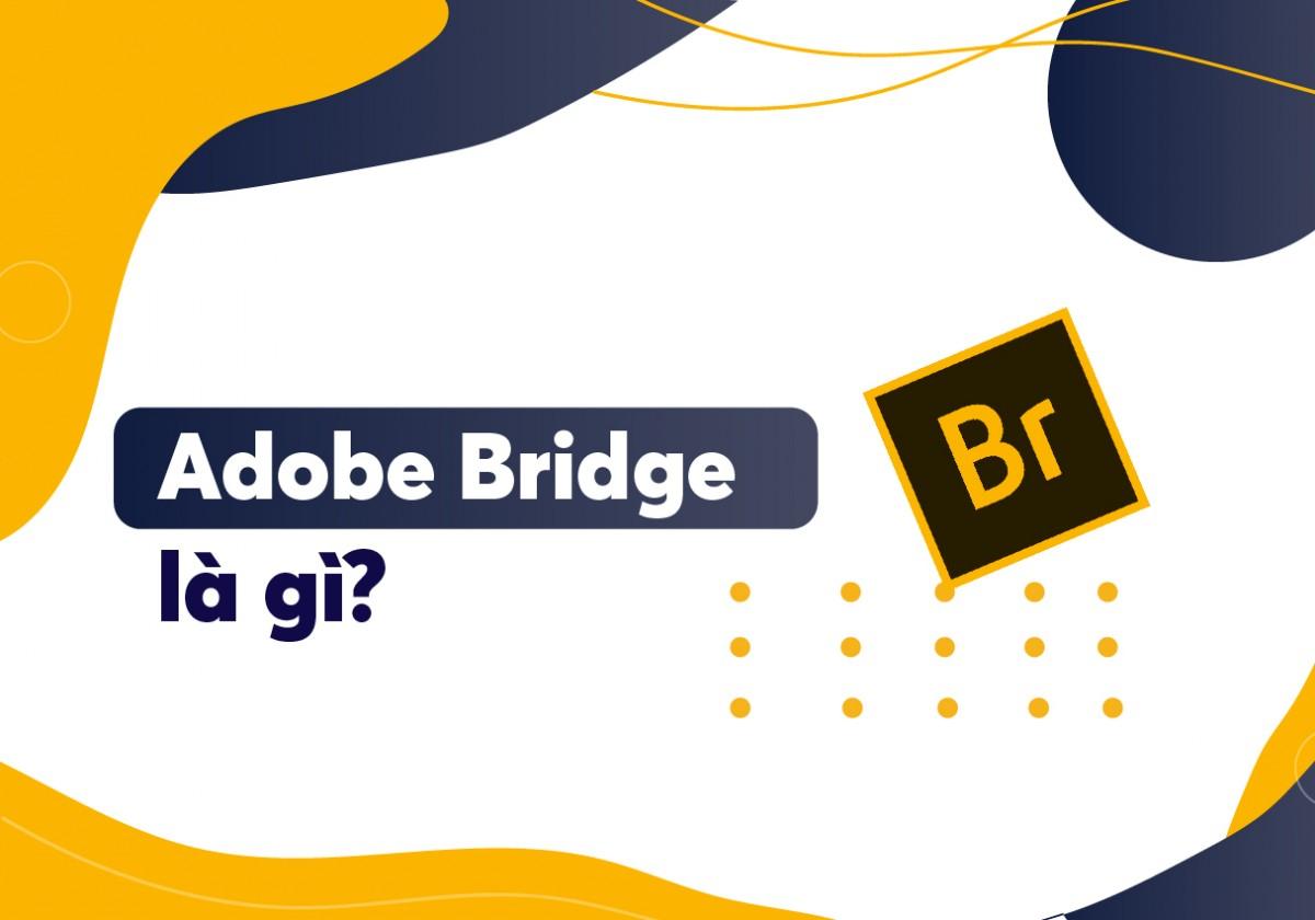 Hiện nay, hầu hết các designer không chuyên còn khá xa lạ với chương trình Adobe Bridge. Vậy Adobe Bridge là gì? Hãy cùng nhau tìm hiểu nhé!