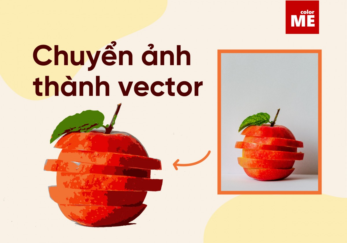 Nếu bạn đang làm việc với dự án của mình trong Adobe Illustrator, nhưng hình ảnh bạn sử dụng lại là đuôi.jpg hoặc .png. Vậy có cách nào để biến chúng trở thành vector không nhỉ? Theo dõi bài viết dưới đây để chuyển ảnh thành vector chỉ trong nháy mắt nhé!