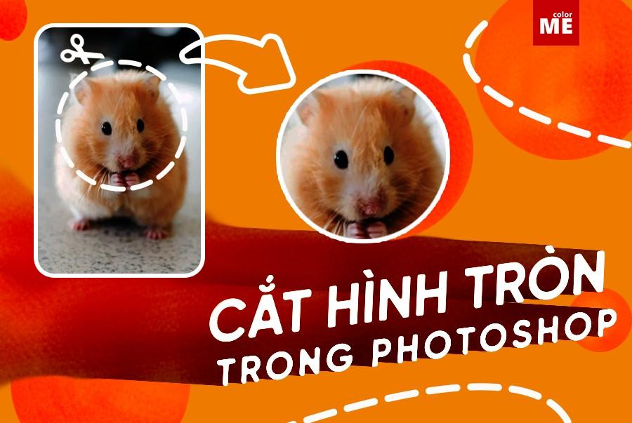 Thông thường khi nghĩ đến việc cắt xén hình ảnh trong Photoshop, chúng ta thường nghĩ đến việc cắt chúng thành hình chữ nhật hoặc hình vuông. Vậy nếu bạn muốn cắt ảnh thành hình tròn thì làm thế nào? Theo dõi hướng dẫn cách cắt hình tròn trong Photoshop dưới đây cùng ColorME nhé