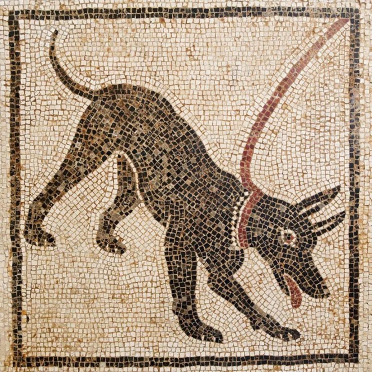 Tấm mosaic tại Pompeii có tên 'Cave Canem' (Beware the dog)  thế kỷ thứ I sau CN