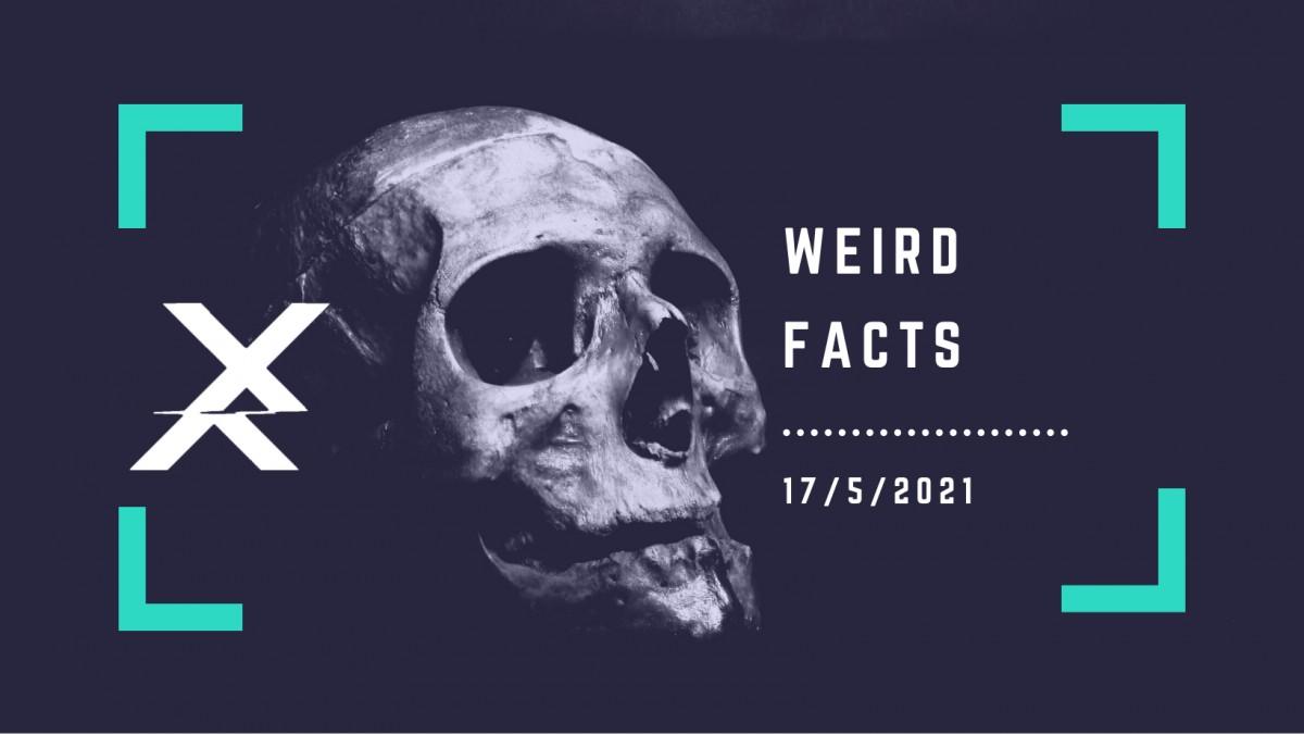Dự Án Weird Facts Mở Đơn Tuyển Core Team ( phi lợi nhuận - online - toàn quốc )